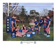 Reeds rugby team commissioned painting by christina pierce, cricket artist